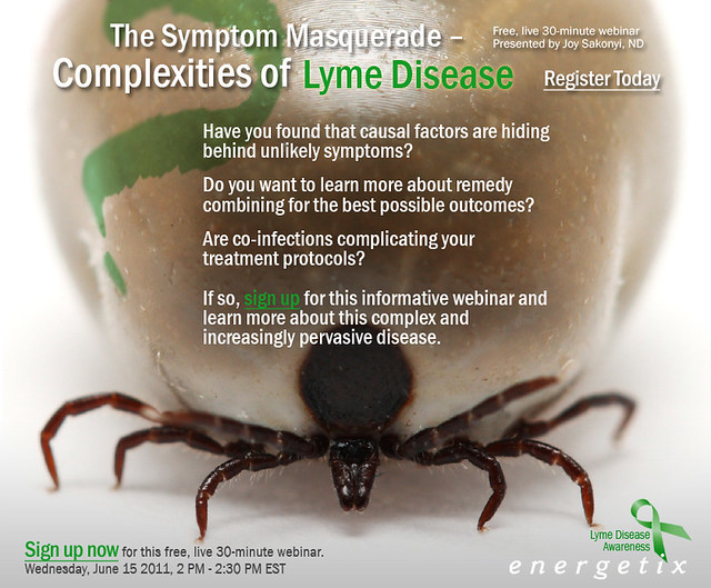 The Symptom Masquerade – Complexities of Lyme Disease eblast 2