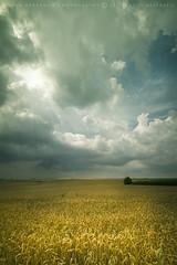 Hairiamont II (DavidHR) Tags: storm canon angle belgium belgique wide belgi sigma 7d nuages 1020 orage champ 2011 luttre pontcelles obaix davidherreman hairiamont