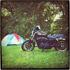 キャンプ.