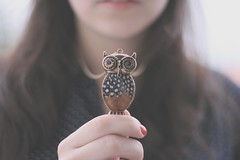 204/365 owl owl (Honey Pie!) Tags: cute vintage necklace bokeh adorable days honey owl coruja 365 colar retr pendant trinket pingente softtones 365days honeypie 365daysproject 365dias 365daysofhoney nelinasouza nelinadesouza