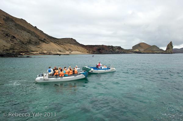 RYALE_Galapagos-298