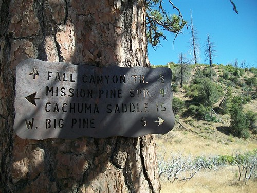 Mission Pine Basin/Santa Cruz Junction