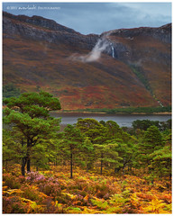 Autumn Looms (Dylan Toh) Tags: autumn cloud mist colour leaves forest landscape photography scotland waterfall loch dee maree slioch torridon everlook