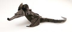 Rat (Eric Joisel) (Danielle Verbeeten) Tags: art paper rat origami kunst papier paperfolding papiroflexia folding vouwen joisel ericjoisel vouwkunst papierkunst papiervouwen
