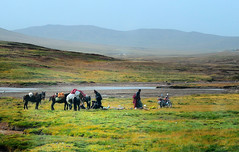 Early morning, Nomads breaking up campsite, Tibet (reurinkjan) Tags: drokba tibetanlandscape  janreurink amdo tibetanplateaubtogang matocounty tibet machukha bayankalarirgyudrange tibetanethnicitybodrigs nomadsbrogpa landscapeyulljongs naturerangbyung 2010 tibetanbodpa landscapesceneryrichuyulljongsrichuynjong