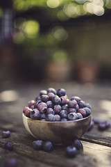 bowl of blues. (kvdl) Tags: summer garden bokeh july bowl blueberry blueberries shallowdof canonef35mmf14lusm kvdl TGAM:photodesk=shallowdof