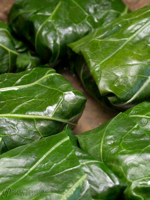 Collard Green Rolls