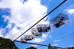 freedom? (e.nhan) Tags: life blue light sky art nature closeup clouds dof cloudy backlighting enhan