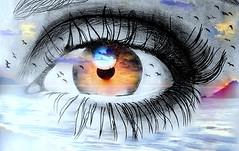 Desde la piel y el sentir, las historias ya no alcanzan... (conejo721*) Tags: iris argentina ojo mar amor luna pájaros cielo nubes isla palabras horizonte mardelplata pupila sentimiento poesía poema conejo721