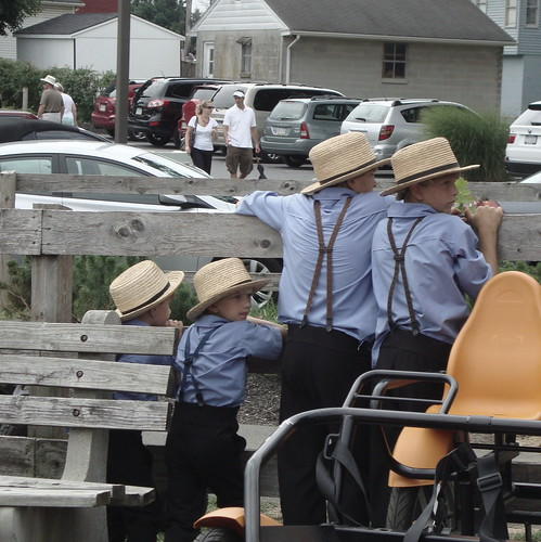 Lancaster - The Amish and their life