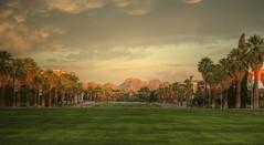 University of Arizona Mall (marwan.mustafa.23) Tags: red arizona sky sun mountains grass yellow clouds dawn downtown tucson az palmtrees oldmain hdr uofa universityofarizona wildcats greenbrick