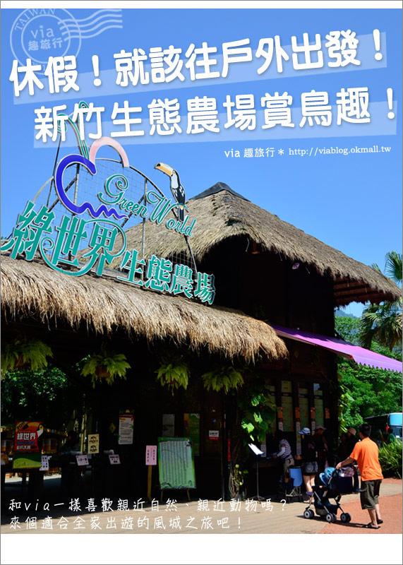 【新竹景點】新竹哪裡好玩~綠世界生態農場賞鳥趣!