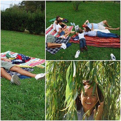 collage_picnic3