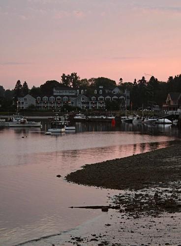 Pink at Dawn