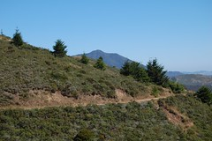 Mt. Tamalpais State Park - Miwok Trail and Mt. Tam East Peak