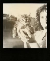 Romeo (amnesiak1978) Tags: girl cat polaroid kitty romeo blackframe portatrait impossibleproject px600uv poorpod