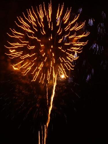 Van Gogh Sunflower Firework