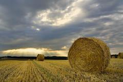 summer evening  -  soir d'été (pierre hanquin) Tags: light sunset cloud sun color yellow clouds jaune landscape geotagged nikon belgium belgique pierre nuages paysage landschaft wallonie d7000 hanquin