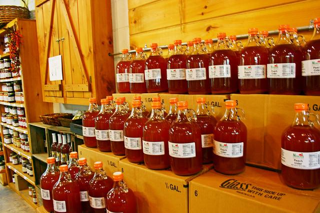 Cider At Mercier Orchards {Blue Ridge, Georgia}