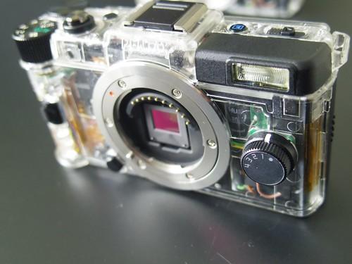 IMGP0261
