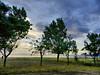 Rocca Imperiale Marina - Il lungomare (NIKOZAR (Nicola Zaratta)) Tags: sunset summer italy panorama cloud beach alberi clouds marina landscape nikon italia tramonto nuvole mare estate coolpix colori lungomare calabria hdr controluce p500 baia nikoncoolpix sunsetsea marjonio tramontosulmare nikonp500 roccaimperiale nikoncoolpixp500 coolpixp500 costajonica altojonio nikozar hdrp500 marinadiroccaimperiale