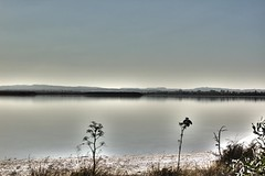 Aliki Saltlake - Larnaca (TasosCon) Tags: flowers lake reflection silhouette dynamic surrealism salt creepy hills saltlake hyper range surrealistic hdr