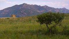 Near Patrimonio (badobaz) Tags: mountains tree landscape evening corse oldhouse lx5
