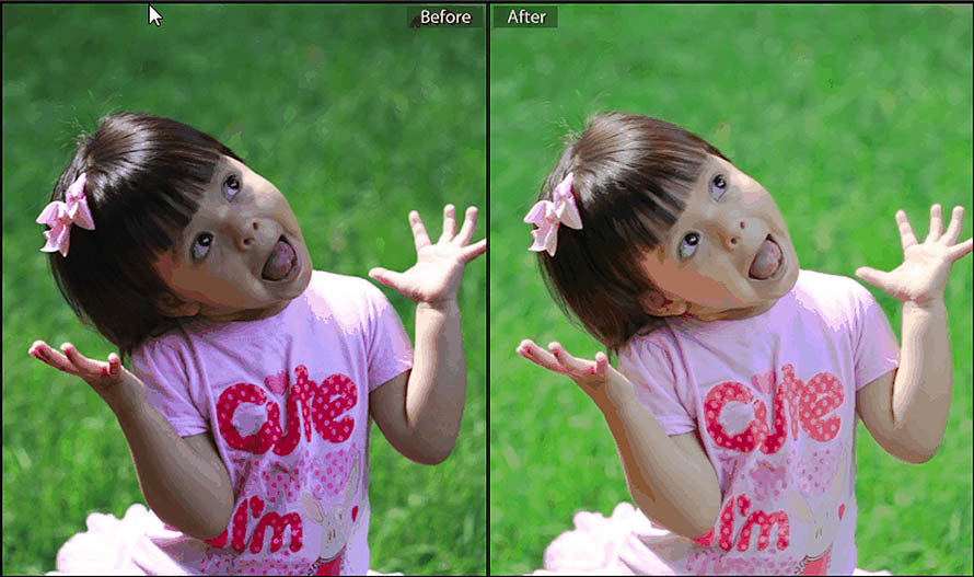 Lightroom N-Before and After