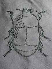 Cylister oblongum, the penultimate beetle! (gnommi) Tags: insect embroidery beetle embroidered entomology cylister