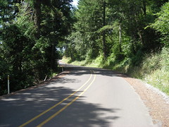 Winding up the east side of Buckner Creek Road