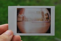 diana + fisheye + instax mini (Ben Wolfarth) Tags: camera pink fish colour eye film 30 toy polaroid photography living back lomo lomography long fuji over lofi mini plastic diana f instant fujifilm analogue exposed seconds instax 18mm