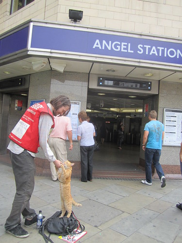 Bob the Cat outside Angel Tube by Annie Mole