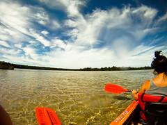 Paddle Paddle (JoeModz) Tags: lake water kayak paddle clear loonlake clearwater paddles puremichigan