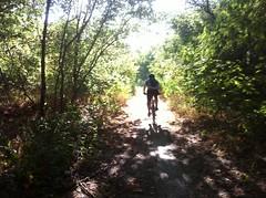 Rowlett Woods