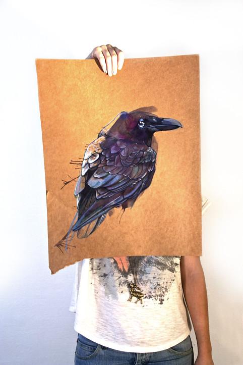 Maître Corbeau 3 © Emilie Vasset