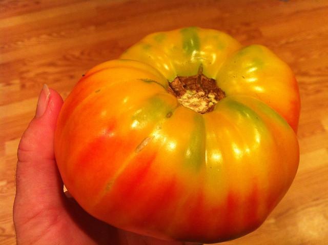 Jah tomato