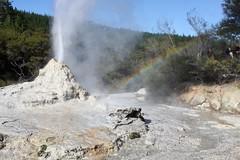 New Zealand: Wai-O-Tapu Thermal Wonderland (eliduke) Tags: newzealand nz geyser geothermal thermal waiotapu ladyknox