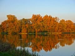 Autumn Surprise (algo) Tags: autumn sky fall topv111 bronze reflections topf50 topv333 bravo algo 50f incamerahdr