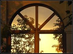 Riflesso (Silva Marras) Tags: red yellow foglie tramonto finestra giallo albero rosso controluce riflesso