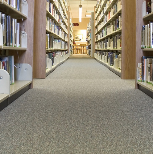 Koydol Broadloom Carpet: Have-It-All Organic Collection