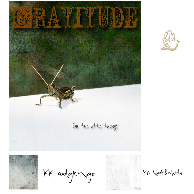 gratitude for the little things 2