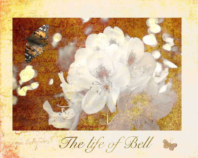 The LIfe of Bell texturized