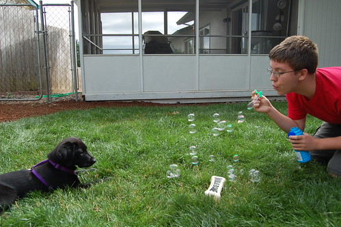 Adam and Leia playing with bubbles