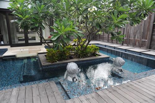 部屋のプール