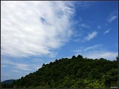 DSC03447 Photo