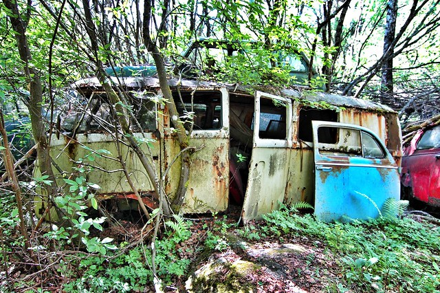 bus classic cars abandoned graveyard car vw volkswagen nikon rust geocaching d70 nikond70 sweden decay abandon mango geocache vehicle hippie oldtimer rusting van decaying barndoor bromley urbex youngtimer type2 splitty splittie hippiebus splitwindow båstnäs junkjard gc1ehde
