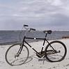 (stereomind) Tags: beach sunny hasselblad helsingor dinamarca 500cm