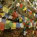 Bandeirinhas tibetanas