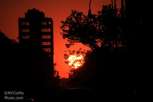 Manhattanhenge with leaves From 14th Street July 12, 2011