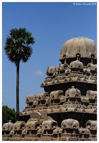Dharmaraya Ratha Roof